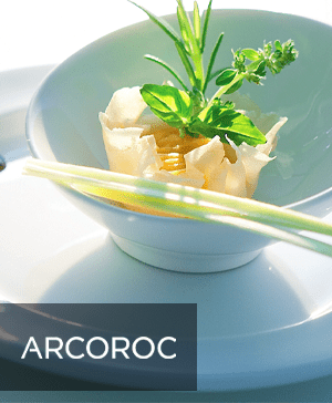 Arcoroc Crockery Ranges